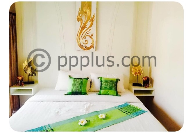 hotel to lease in patong phuket